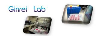 Image of About Ginreilab Inc.